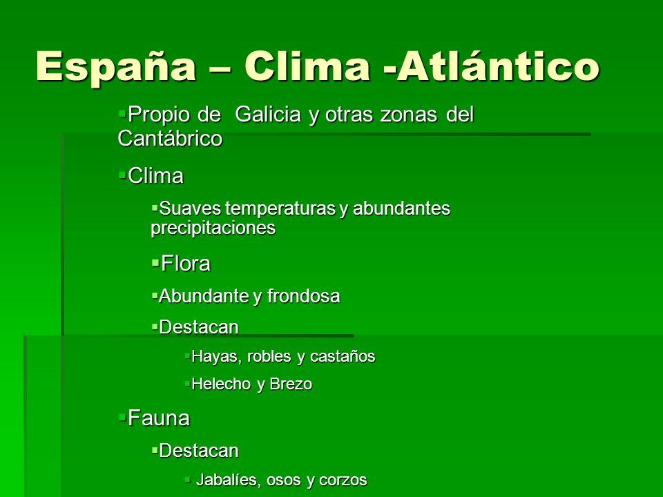 Clima, Flora y Fauna Clima, Flora y Fauna Los tipos de Clima Los tipos de Clima Clima Mediterráneo Clima Mediterráneo Clima Subtropical Clima Subtropi