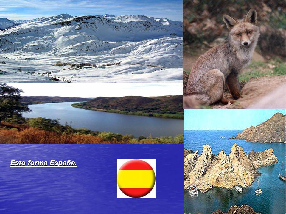 Los tipos de viento de España Cierzo. Fuerte viento muy frío y seco originado en el valle del Ebro, debido a la diferencia de presión entre el Mar Can