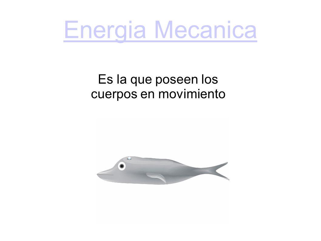 Energia Mecanica Es la que poseen los cuerpos en movimiento