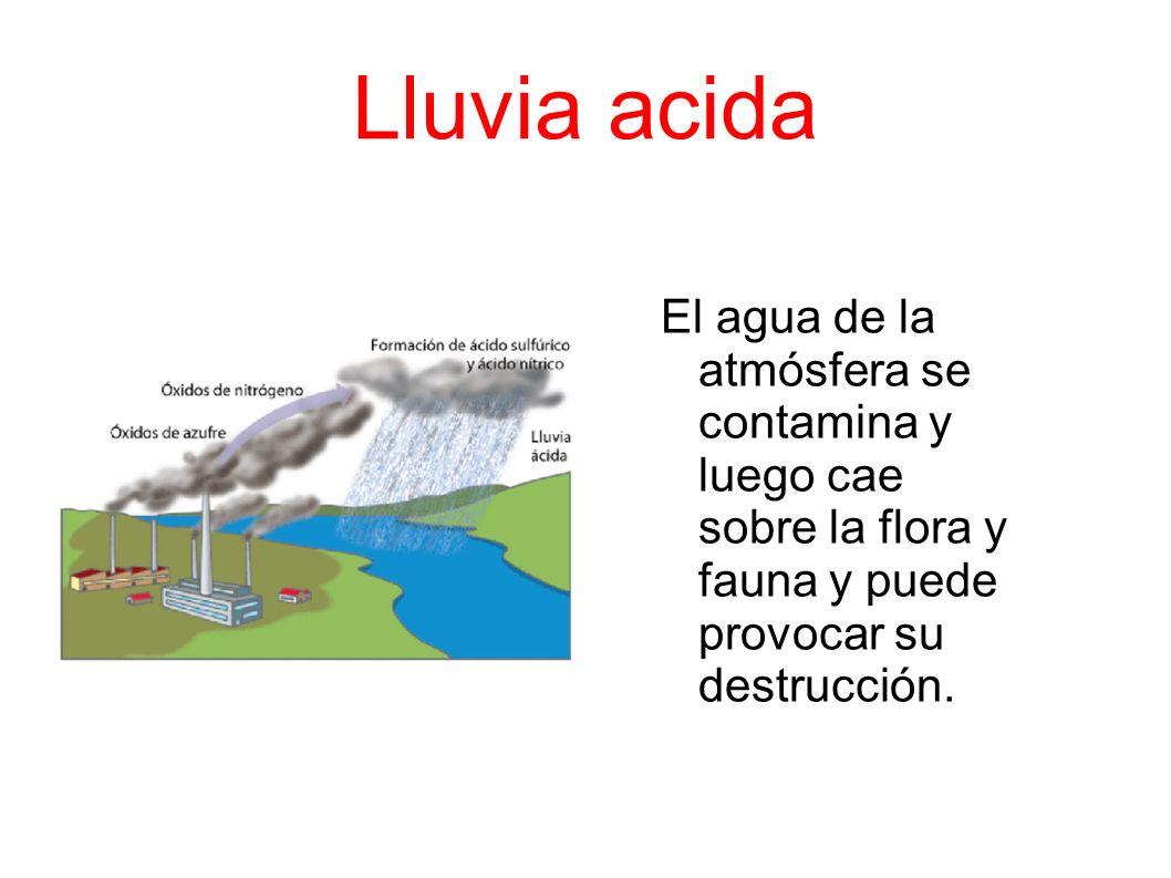 Lluvia acida El agua de la atmósfera se contamina y luego cae sobre la flora y fauna y puede provocar su destrucción.