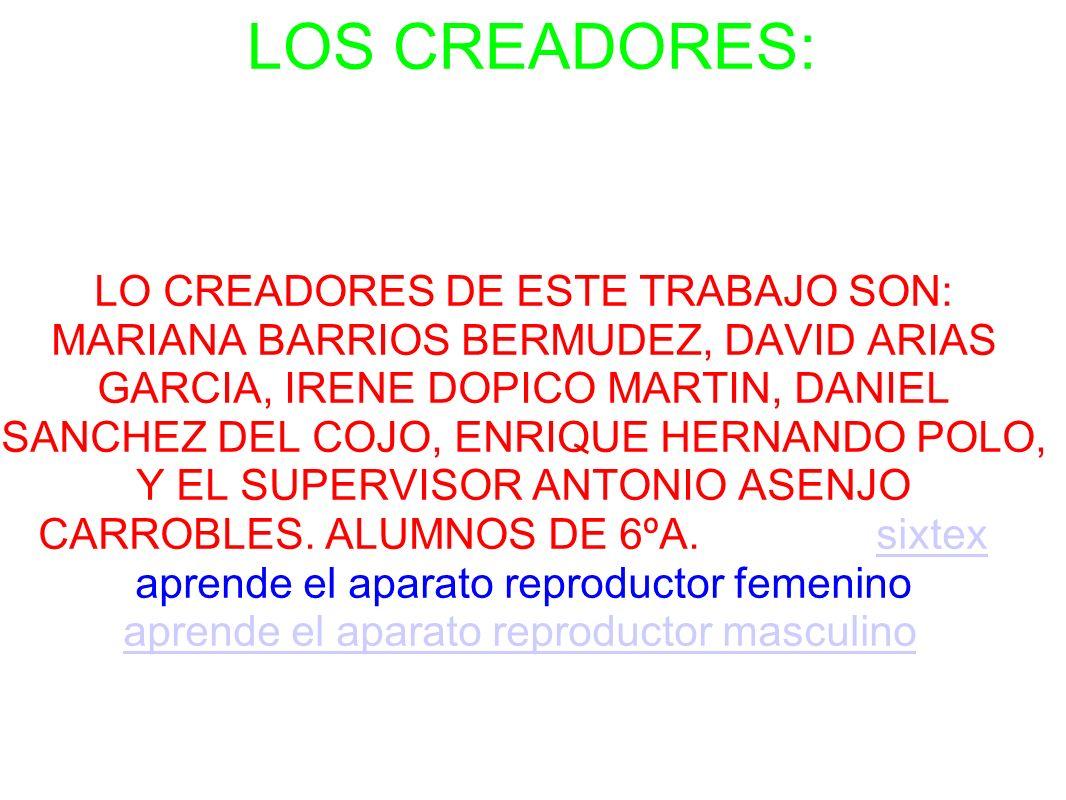LOS CREADORES: LO CREADORES DE ESTE TRABAJO SON: MARIANA BARRIOS BERMUDEZ, DAVID ARIAS GARCIA, IRENE DOPICO MARTIN, DANIEL SANCHEZ DEL COJO, ENRIQUE H