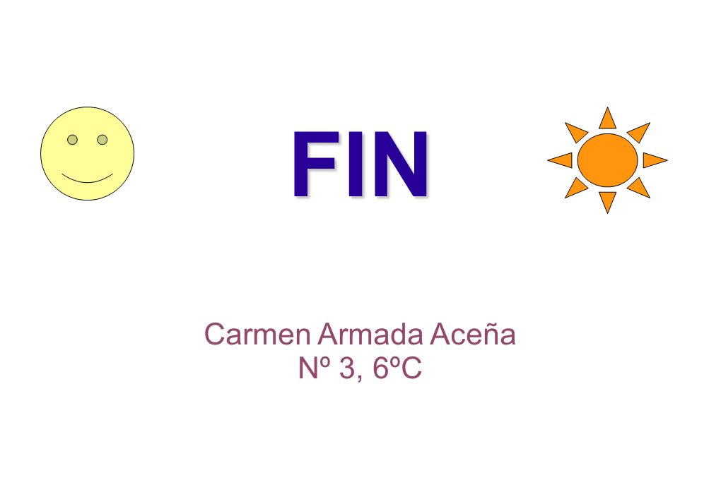 FIN Carmen Armada Aceña Nº 3, 6ºC