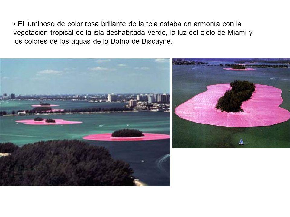 El luminoso de color rosa brillante de la tela estaba en armonía con la vegetación tropical de la isla deshabitada verde, la luz del cielo de Miami y