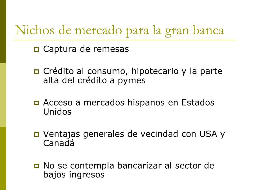 Nichos de mercado para la gran banca Captura de remesas Crédito al consumo, hipotecario y la parte alta del crédito a pymes Acceso a mercados hispanos