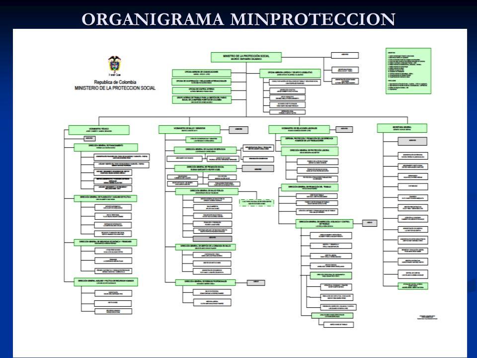 ORGANIGRAMA MINPROTECCION