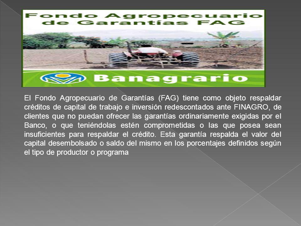 El Fondo Agropecuario de Garantías (FAG) tiene como objeto respaldar créditos de capital de trabajo e inversión redescontados ante FINAGRO, de clientes que no puedan ofrecer las garantías ordinariamente exigidas por el Banco, o que teniéndolas estén comprometidas o las que posea sean insuficientes para respaldar el crédito.