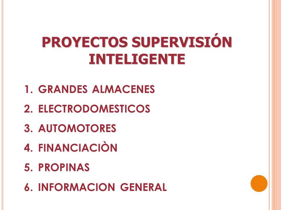 PROYECTOS SUPERVISIÓN INTELIGENTE 1.GRANDES ALMACENES 2.ELECTRODOMESTICOS 3.AUTOMOTORES 4.FINANCIACIÒN 5.PROPINAS 6.INFORMACION GENERAL