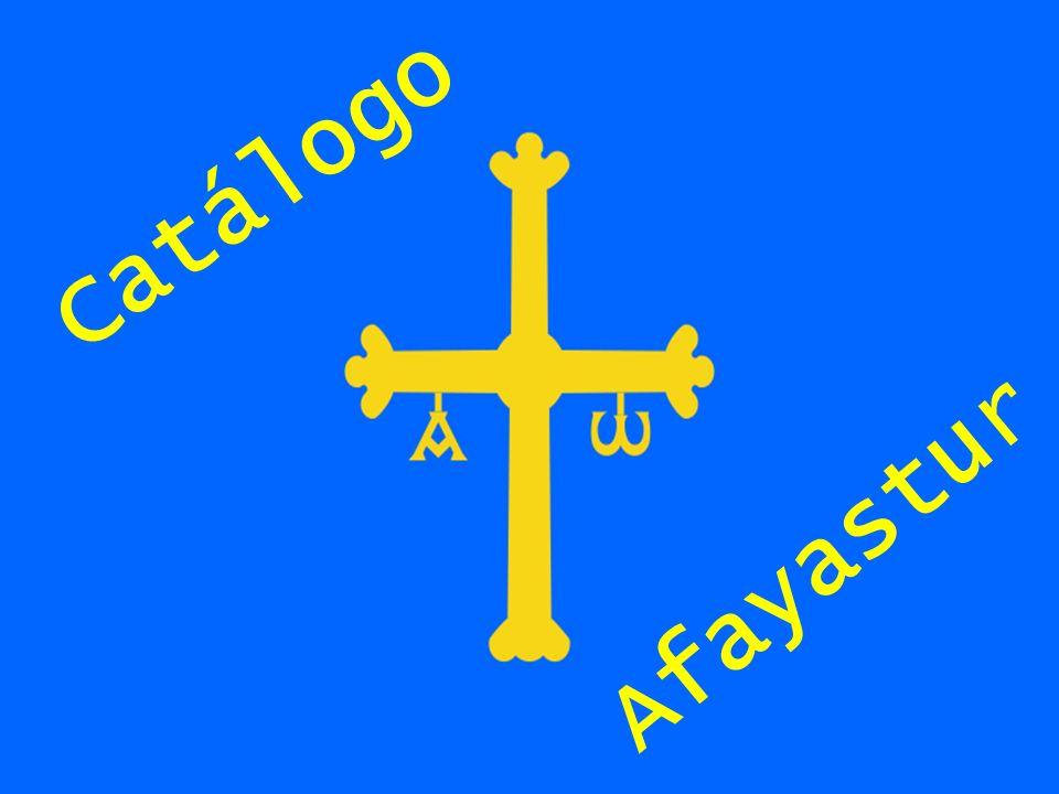 Catálogo Afayastur