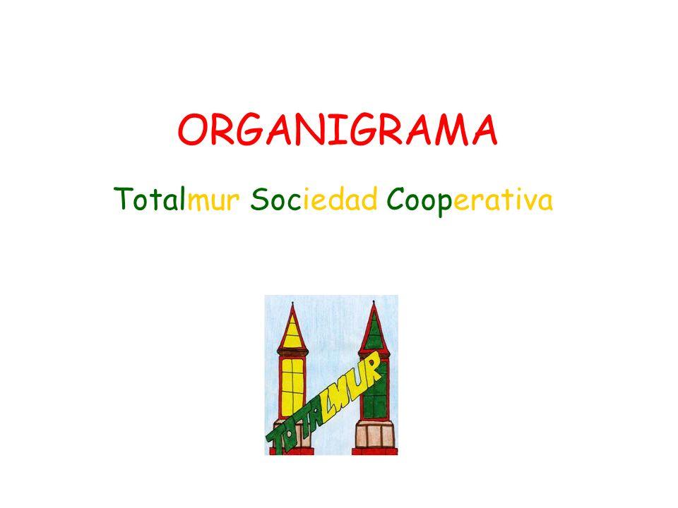 ORGANIGRAMA Totalmur Sociedad Cooperativa