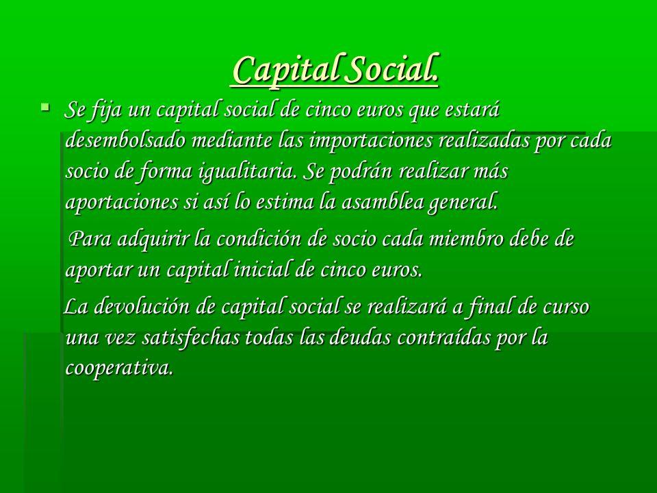 Capital Social. Se fija un capital social de cinco euros que estará desembolsado mediante las importaciones realizadas por cada socio de forma igualit