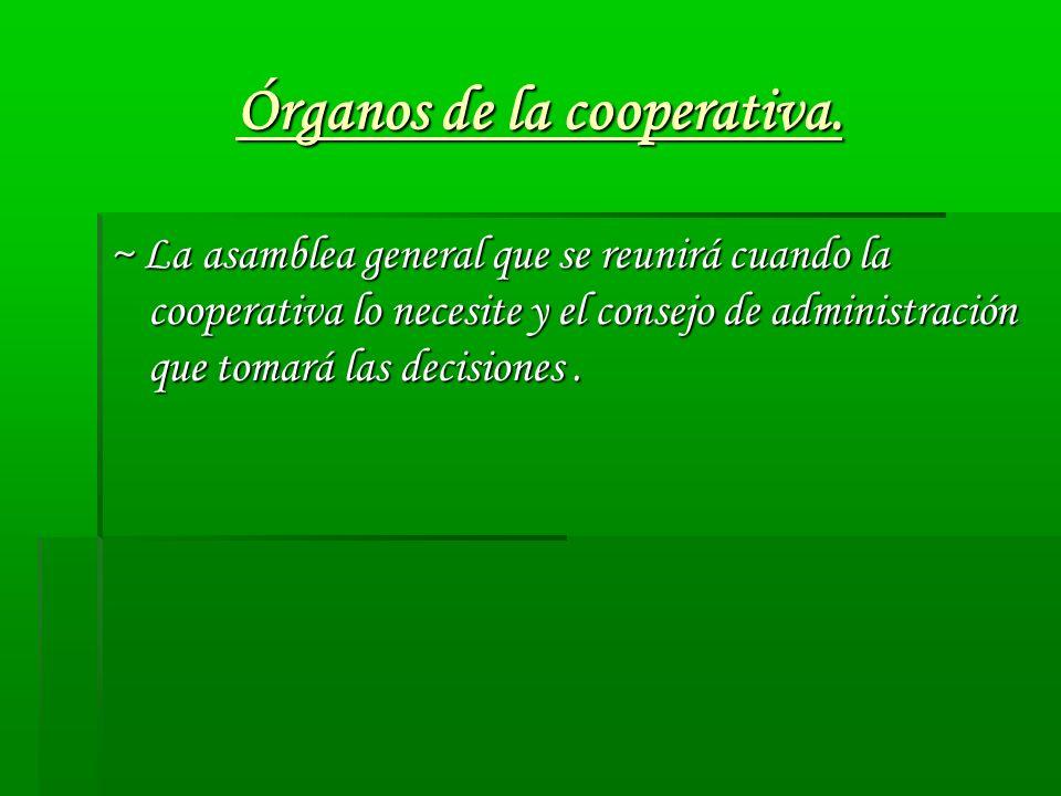 Órganos de la cooperativa. ~ La asamblea general que se reunirá cuando la cooperativa lo necesite y el consejo de administración que tomará las decisi