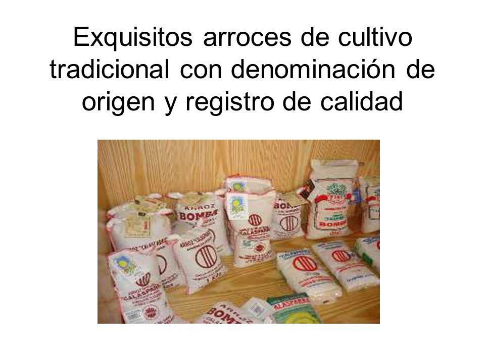 Exquisitos arroces de cultivo tradicional con denominación de origen y registro de calidad