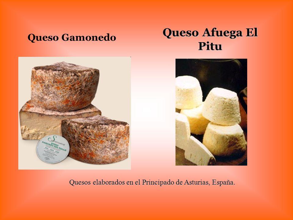 Quesos elaborados en el Principado de Asturias, España. Queso Afuega El Pitu Queso Gamonedo