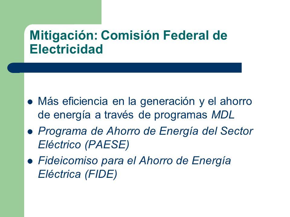 Mitigación: Comisión Federal de Electricidad Más eficiencia en la generación y el ahorro de energía a través de programas MDL Programa de Ahorro de En