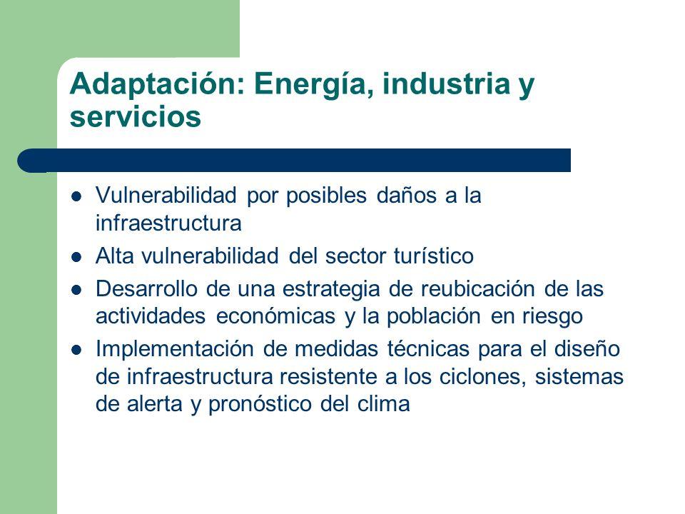Adaptación: Energía, industria y servicios Vulnerabilidad por posibles daños a la infraestructura Alta vulnerabilidad del sector turístico Desarrollo