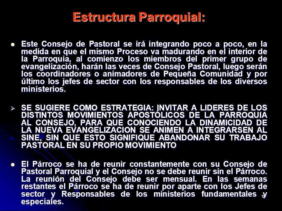16 Estructura Parroquial: Este Consejo de Pastoral se irá integrando poco a poco, en la medida en que el mismo Proceso va madurando en el interior de
