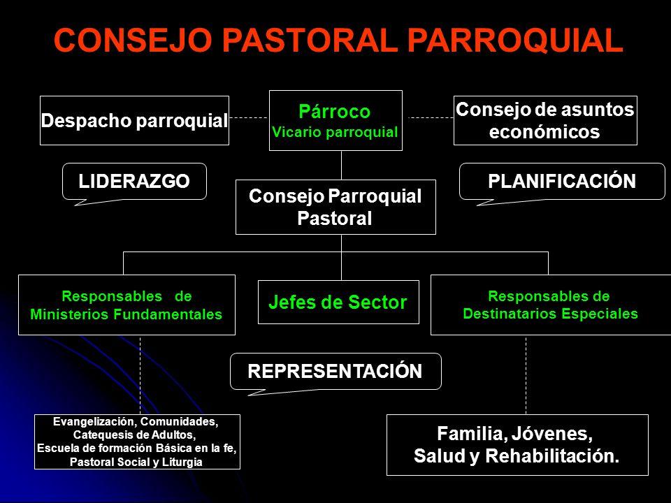 18 CONSEJO PASTORAL PARROQUIAL LIDERAZGO REPRESENTACIÓN PLANIFICACIÓN Párroco Vicario parroquial Despacho parroquial Consejo de asuntos económicos Con