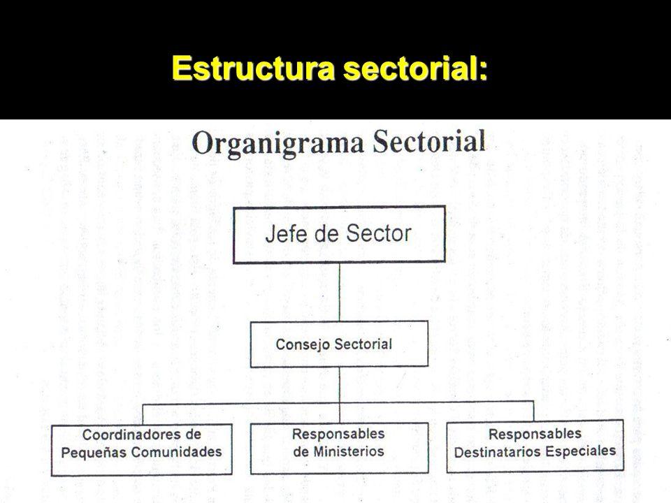 20 Estructura sectorial: