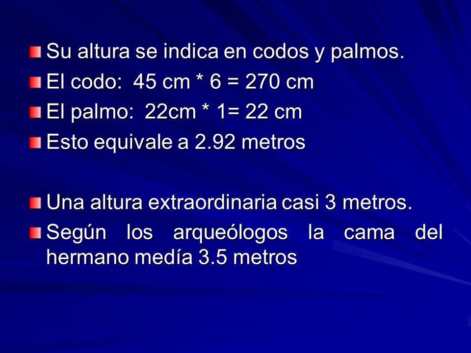 Su altura se indica en codos y palmos. El codo: 45 cm * 6 = 270 cm El palmo: 22cm * 1= 22 cm Esto equivale a 2.92 metros Una altura extraordinaria cas