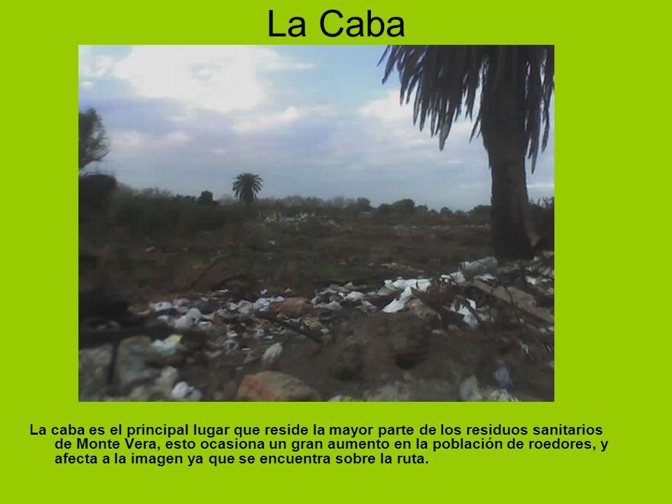 La Caba La caba es el principal lugar que reside la mayor parte de los residuos sanitarios de Monte Vera, esto ocasiona un gran aumento en la població