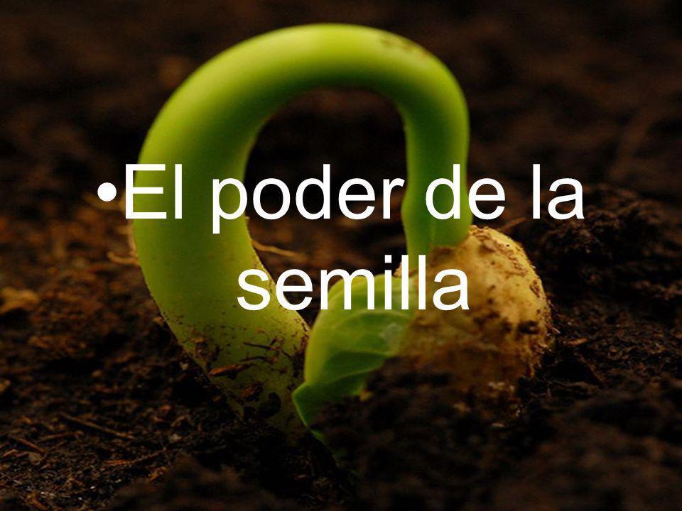 El poder de la semilla