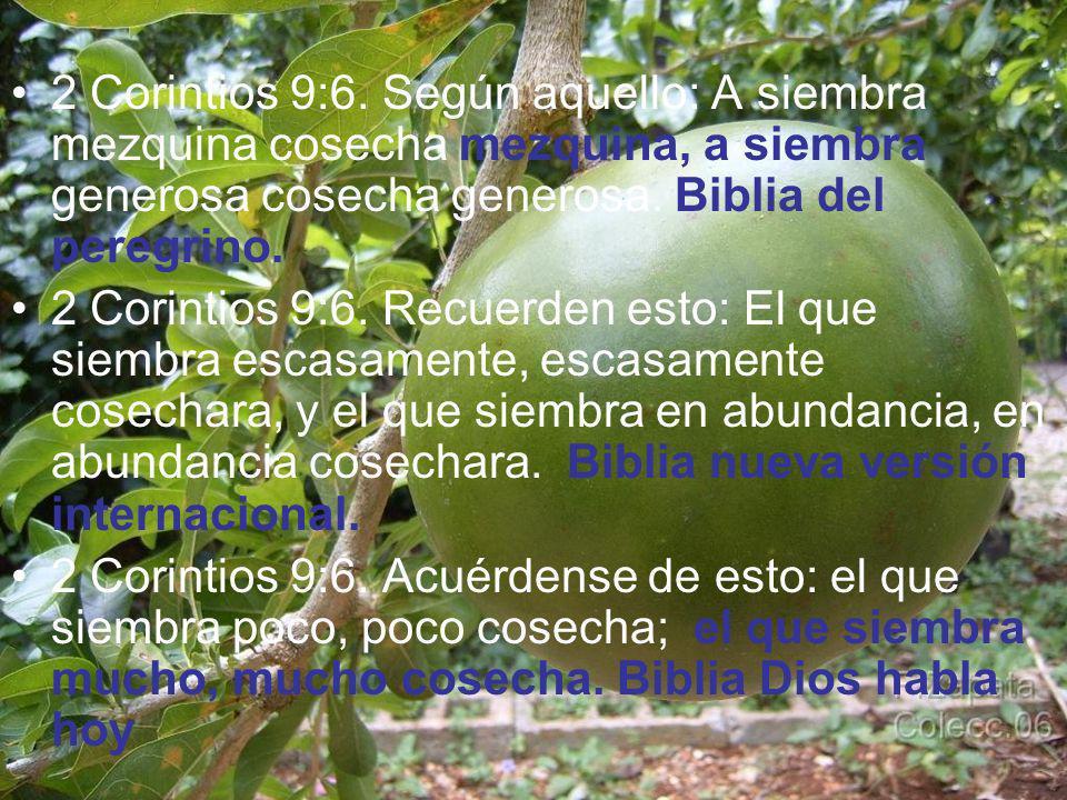 2 Corintios 9:6. Según aquello: A siembra mezquina cosecha mezquina, a siembra generosa cosecha generosa. Biblia del peregrino. 2 Corintios 9:6. Recue