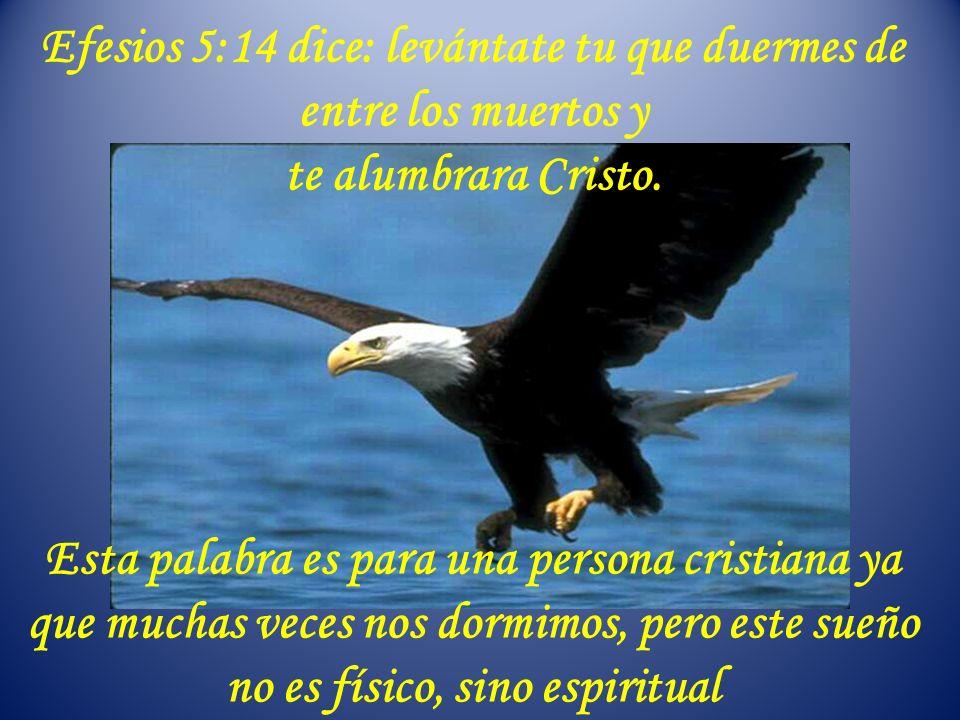 Efesios 5:14 dice: levántate tu que duermes de entre los muertos y te alumbrara Cristo. Esta palabra es para una persona cristiana ya que muchas veces