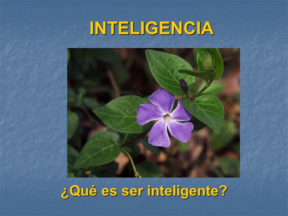 INTELIGENCIA ¿Qué es ser inteligente?