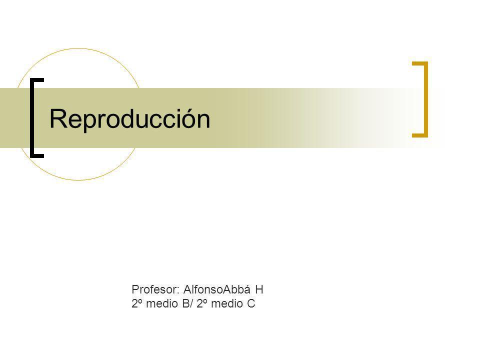 Reproducción Profesor: AlfonsoAbbá H 2º medio B/ 2º medio C