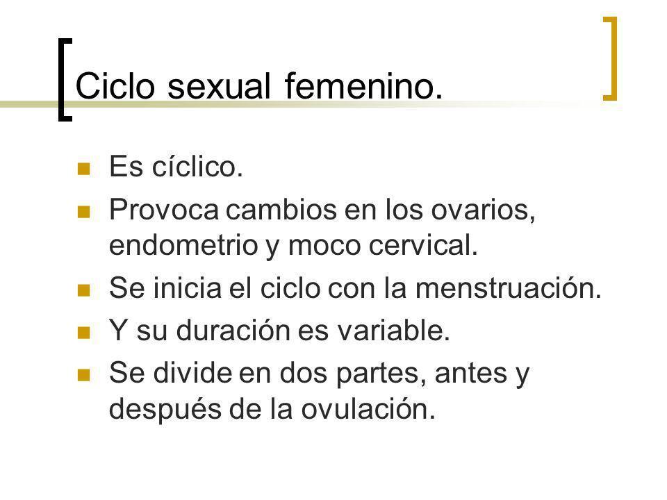 Ciclo sexual femenino. Es cíclico. Provoca cambios en los ovarios, endometrio y moco cervical. Se inicia el ciclo con la menstruación. Y su duración e