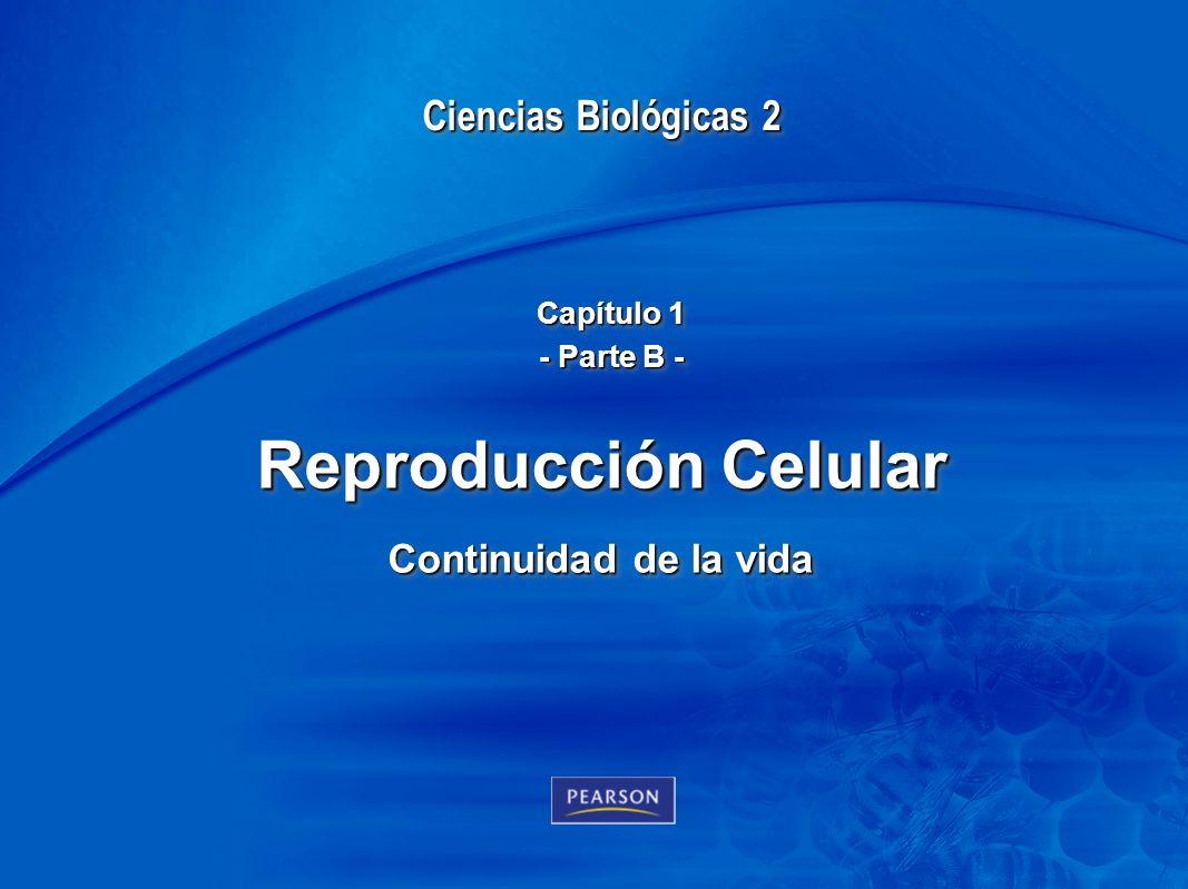Chapter 1 1 Ciencias Biológicas 2 Teresa Audesirk Gerald Audesirk Bruce E. Byres