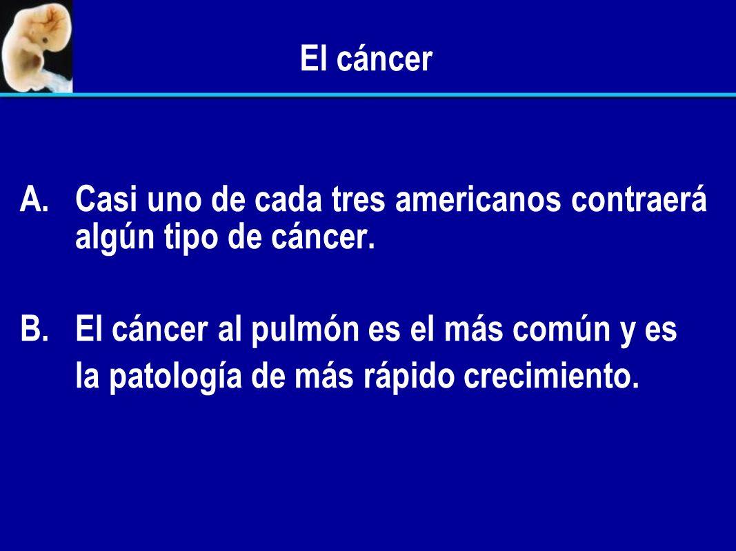 División celular B. B.El cáncer es el resultado de una división celular fuera de control. 1. Las células cancerosas no responden o responden incorrect