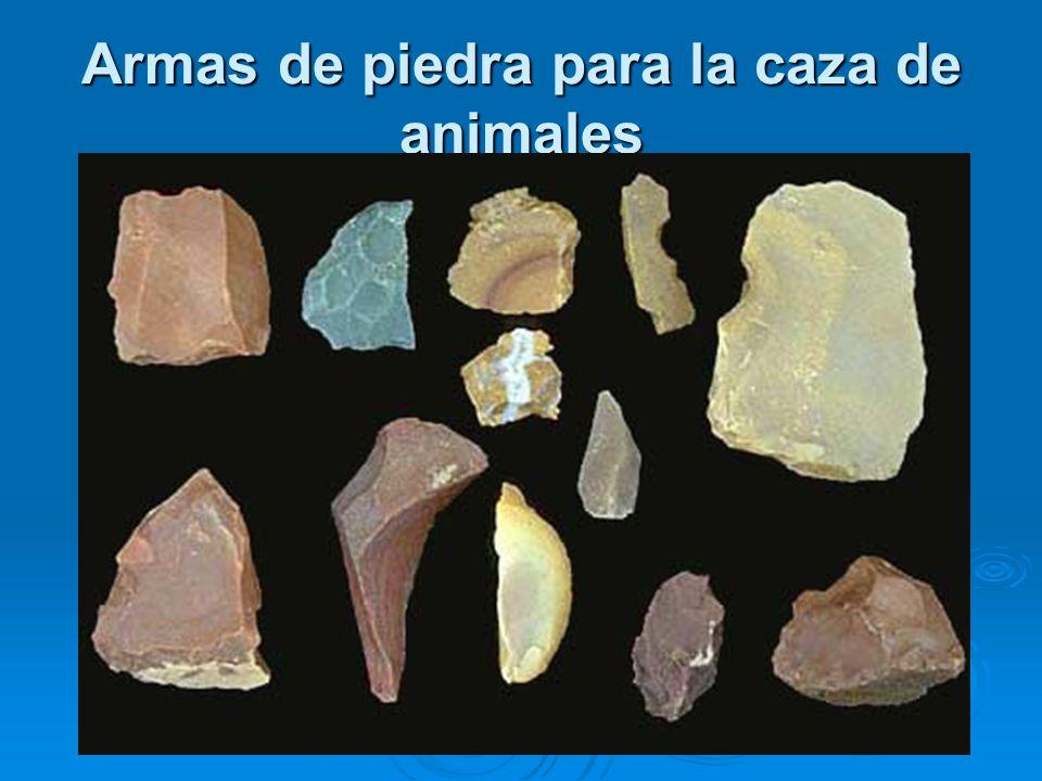 Los hombres primitivos peruanos eran cazadores, nómades y recolectores