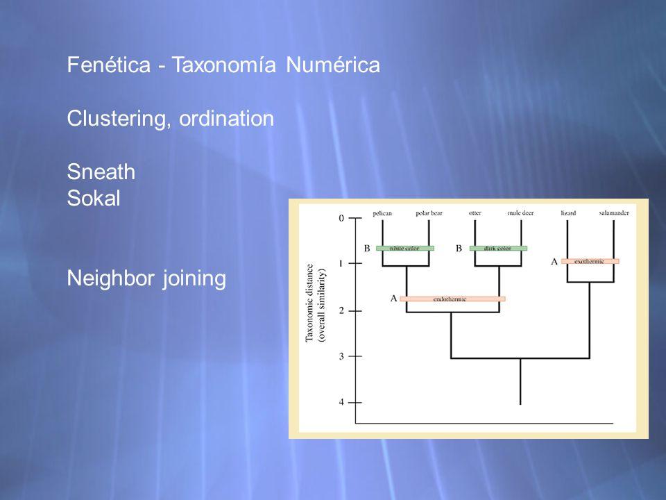 Fenética - Taxonomía Numérica Clustering, ordination Sneath Sokal Neighbor joining