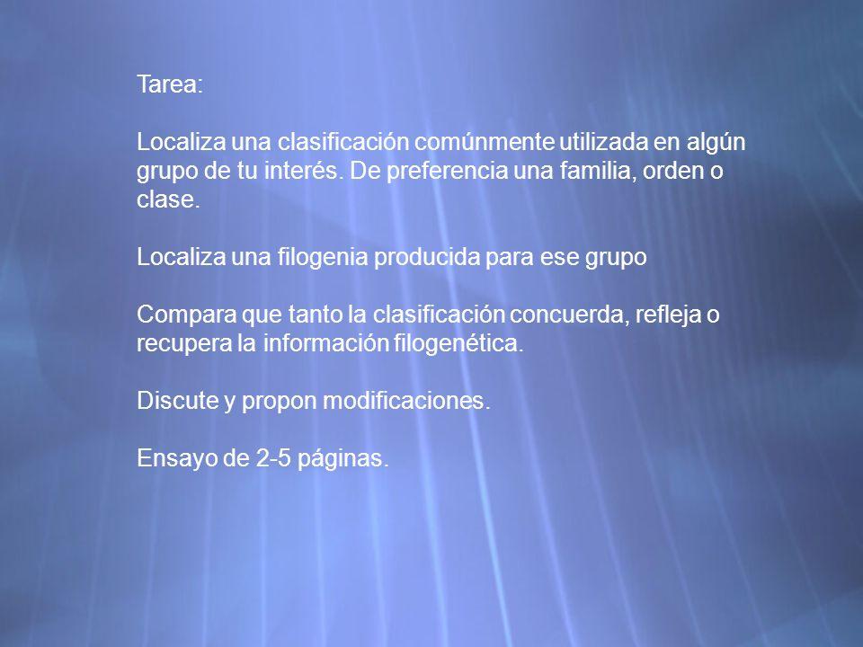 Tarea: Localiza una clasificación comúnmente utilizada en algún grupo de tu interés.