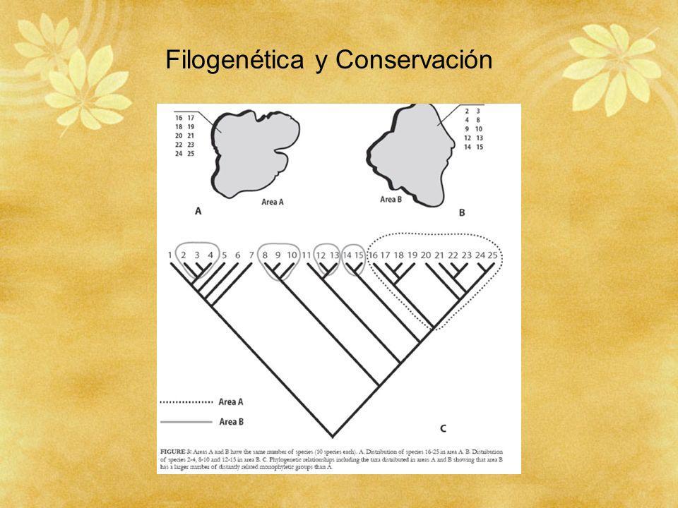Filogenética y Conservación