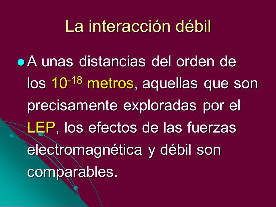 La interacción débil A unas distancias del orden de los 10 -18 metros, aquellas que son precisamente exploradas por el LEP, los efectos de las fuerzas