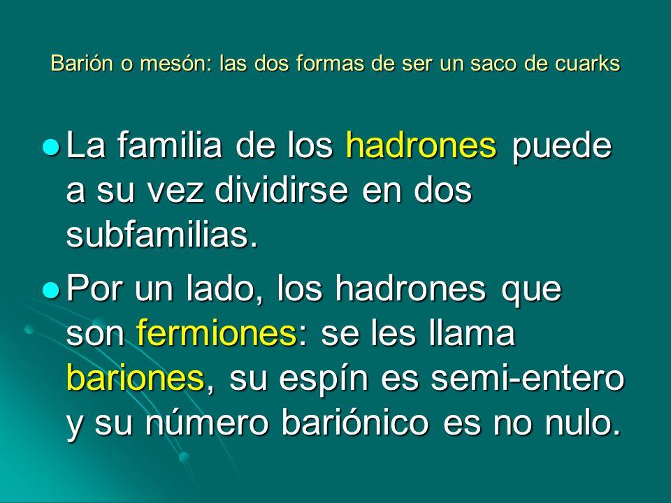 Barión o mesón: las dos formas de ser un saco de cuarks La familia de los hadrones puede a su vez dividirse en dos subfamilias. La familia de los hadr