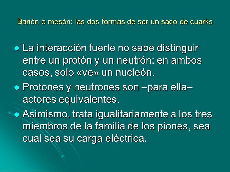 Barión o mesón: las dos formas de ser un saco de cuarks La interacción fuerte no sabe distinguir entre un protón y un neutrón: en ambos casos, solo «v