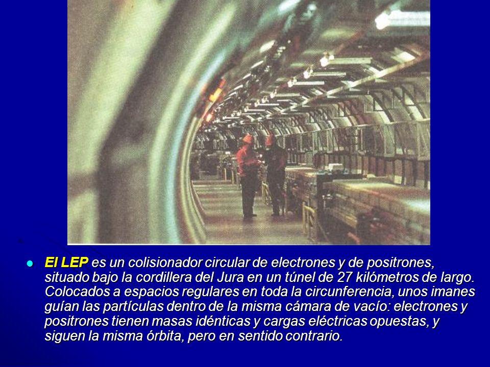 El LEP es un colisionador circular de electrones y de positrones, situado bajo la cordillera del Jura en un túnel de 27 kilómetros de largo. Colocados