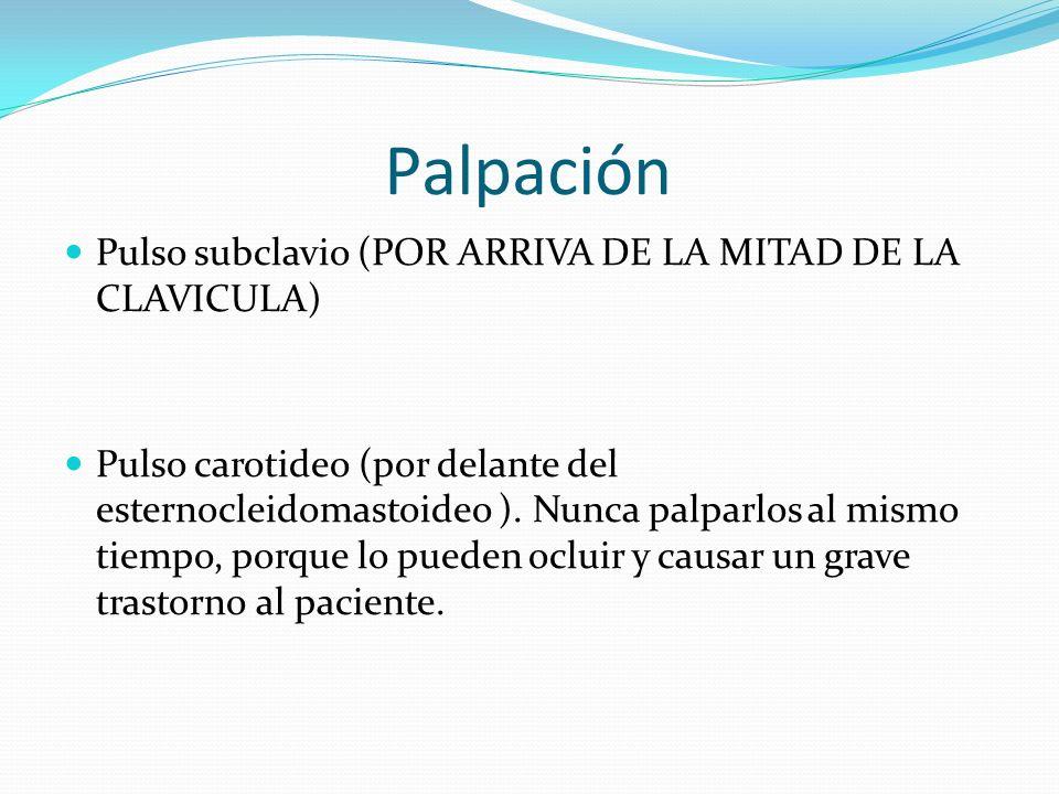 Palpación Pulso subclavio (POR ARRIVA DE LA MITAD DE LA CLAVICULA) Pulso carotideo (por delante del esternocleidomastoideo ).