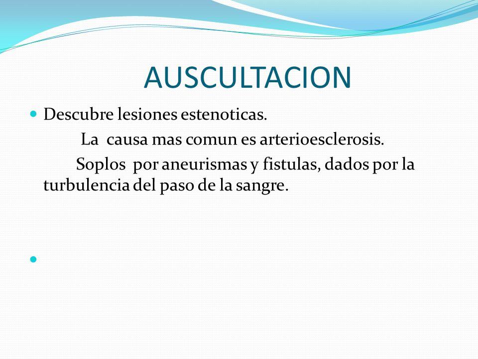 AUSCULTACION Descubre lesiones estenoticas.La causa mas comun es arterioesclerosis.