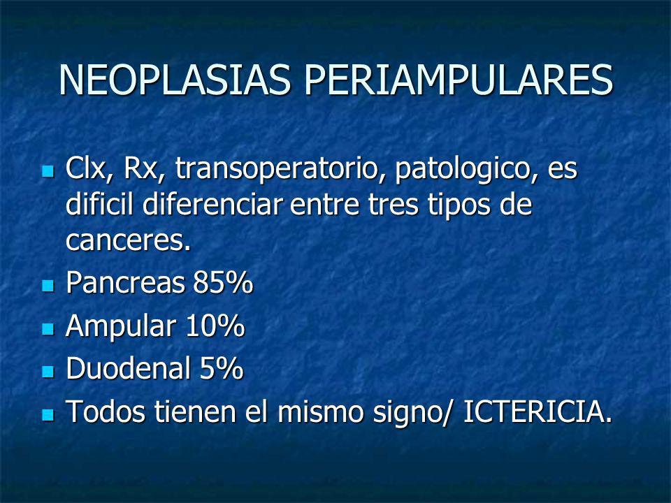 NEOPLASIAS PERIAMPULARES Clx, Rx, transoperatorio, patologico, es dificil diferenciar entre tres tipos de canceres. Clx, Rx, transoperatorio, patologi