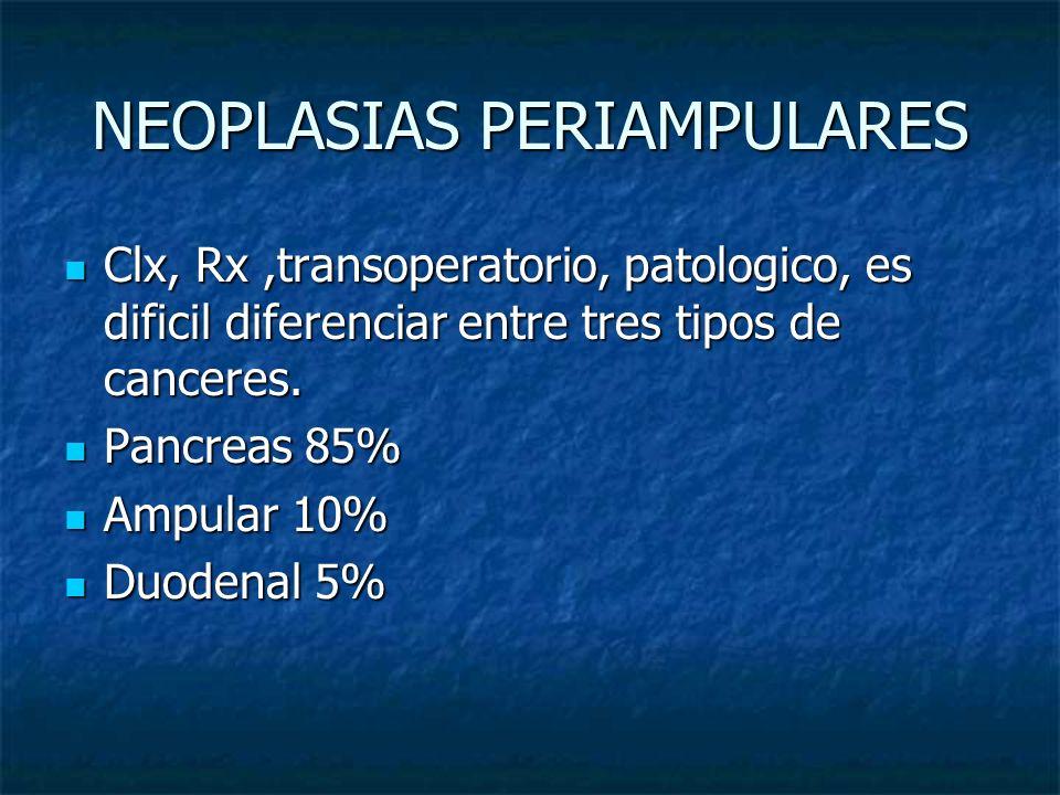 NEOPLASIAS PERIAMPULARES Clx, Rx,transoperatorio, patologico, es dificil diferenciar entre tres tipos de canceres. Clx, Rx,transoperatorio, patologico
