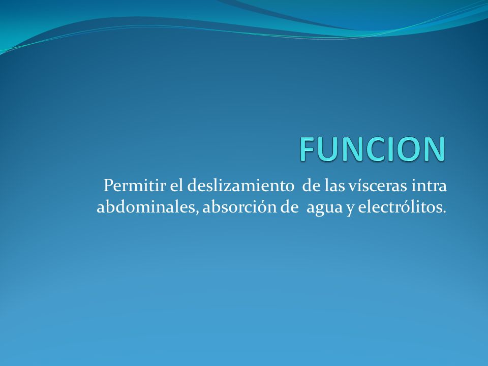 Permitir el deslizamiento de las vísceras intra abdominales, absorción de agua y electrólitos.