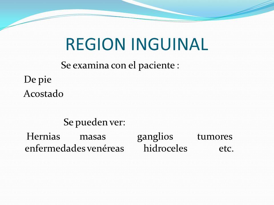 Se examina con el paciente : De pie Acostado Se pueden ver: Hernias masas ganglios tumores enfermedades venéreas hidroceles etc.
