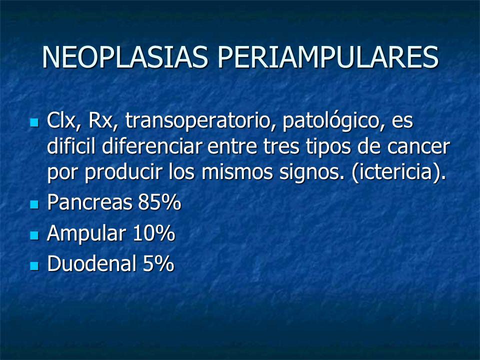 NEOPLASIAS PERIAMPULARES Clx, Rx, transoperatorio, patológico, es dificil diferenciar entre tres tipos de cancer por producir los mismos signos. (icte