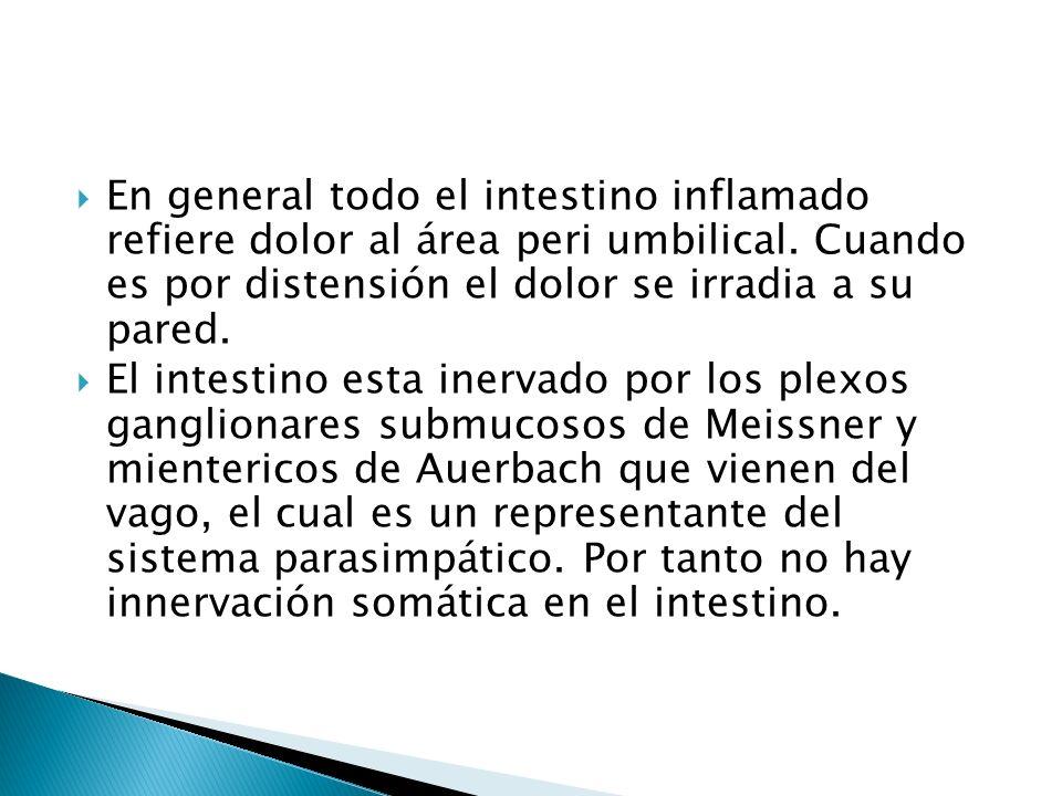 En general todo el intestino inflamado refiere dolor al área peri umbilical. Cuando es por distensión el dolor se irradia a su pared. El intestino est
