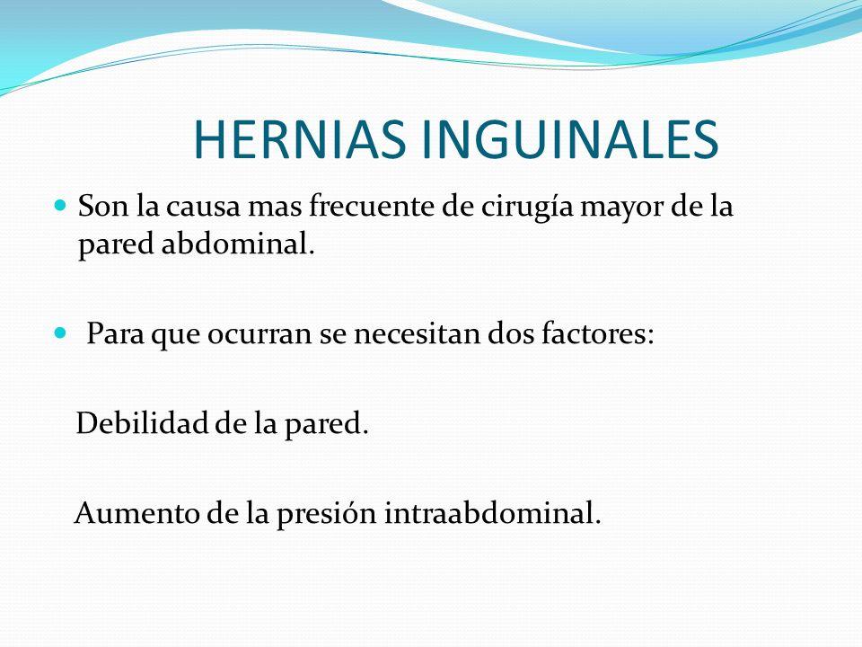 OTROS SITIOS DE HERNIAS Epigástrica Umbilicales Spíegel ( línea para rectal ) Lumbares Obturatríces Recto cistocéles ( del piso pélvico )