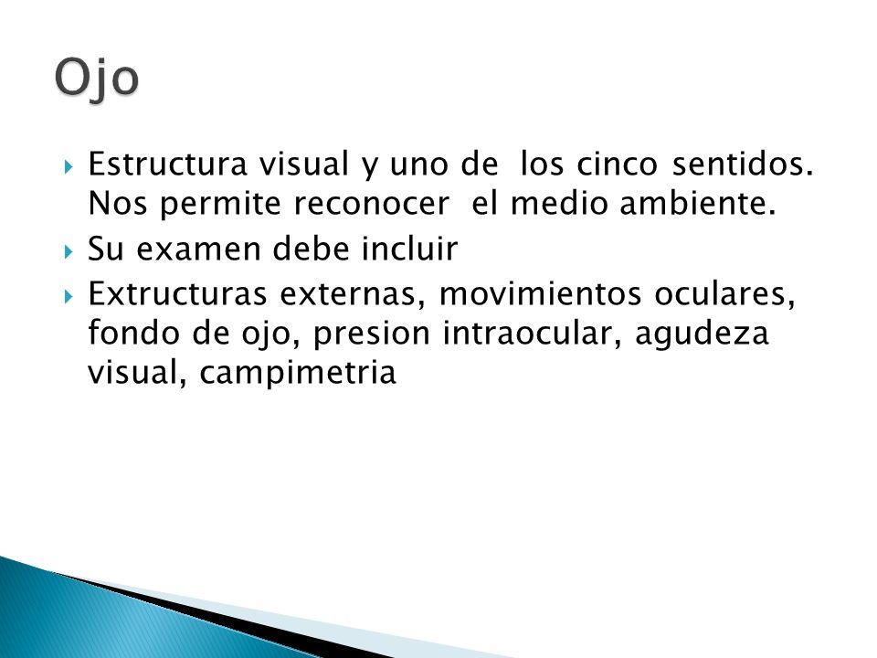Estructura visual y uno de los cinco sentidos. Nos permite reconocer el medio ambiente. Su examen debe inclui r Extructuras externas, movimientos ocul